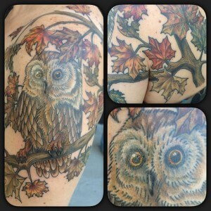 Owl_Perry Stratton